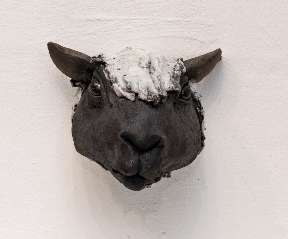 Black sheep head 2 by Carol Read Richard Ballantyne