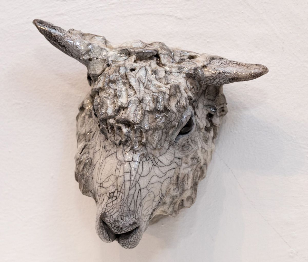Shaggy sheep head 4 by Carol Read Richard Ballantyne