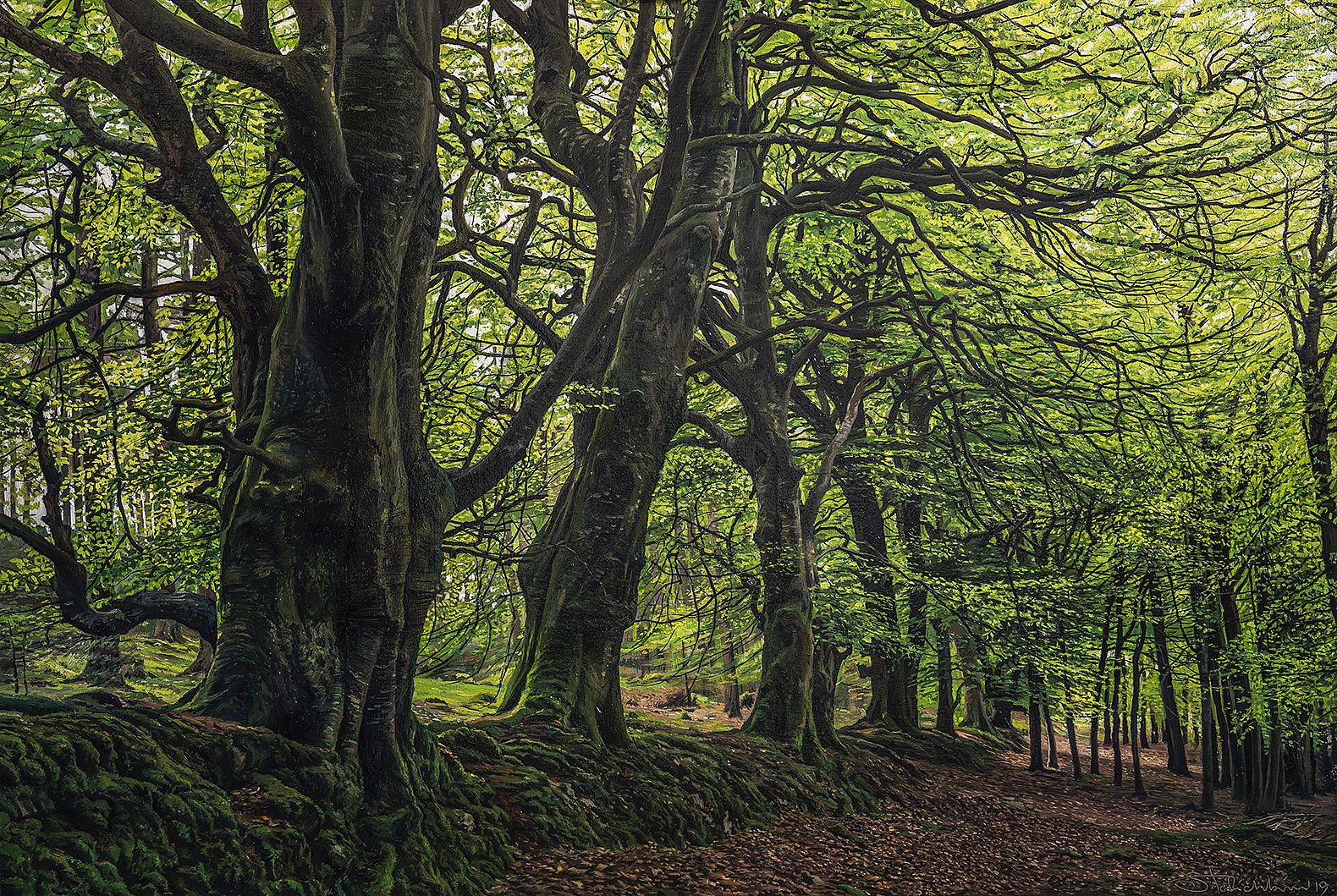 Sergey  Talichkin - Crone Woods , Co. Wicklow