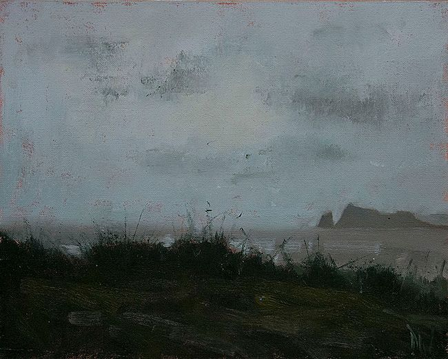 Grey Day, Donabate  by Dave West