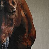 'A Dark Horse' solo show by Tony O'Connor 2012