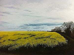 Geraldine O'Reilly Hynes - Yellow Field