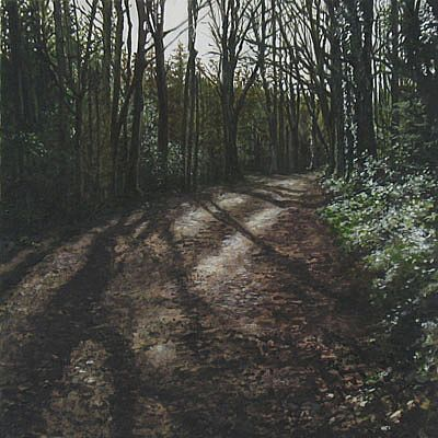 Geraldine O'Reilly Hynes - Shadow path I