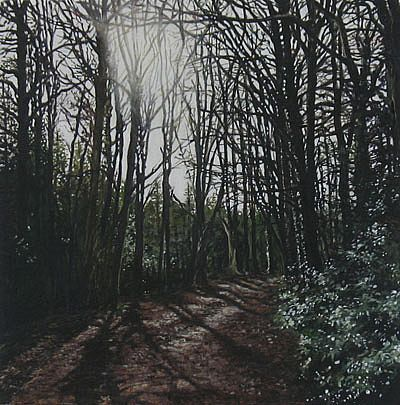 Geraldine O'Reilly Hynes - Shadow path II